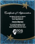 Blue Marble Shooting Star Acrylic Award Recognition Plaque Dande Recommendations