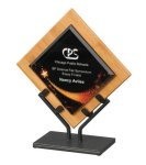 Acrylic & Bamboo Galaxy Awards, Various Colors Eco-Friendly Products