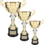 Gold Metal Cup with Silver Accents Trophy Economy Series