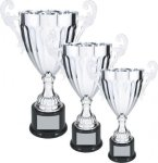 Silver Economy Loving Cup Trophy Economy Series