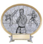 Karate Oval Legend Award Oval Resin Plaque Series