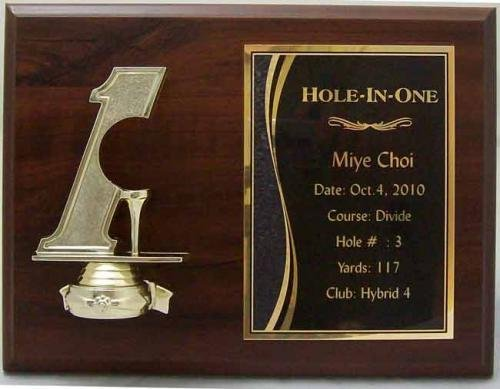 Hole in one golf plaque 9x 12 hole in one gifts amp awards